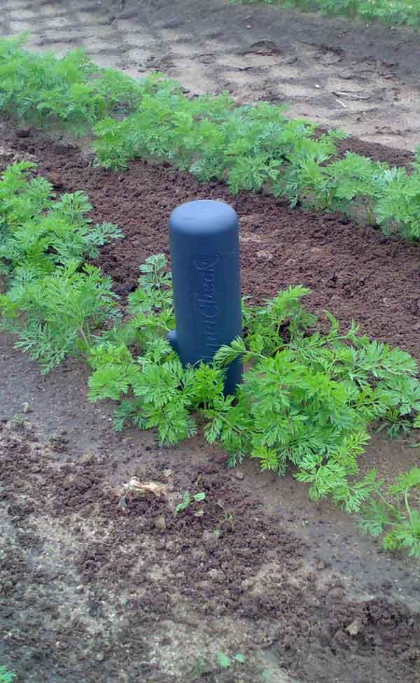 Probe in Soil